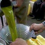 روغن زیتون طبیعی ایرانی